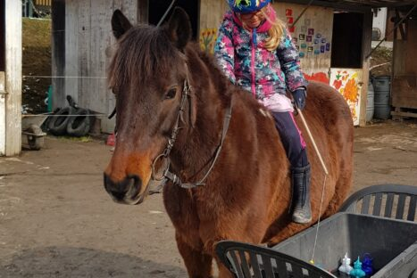 Pony Action Tag 5 (4 – 14 Jahre)